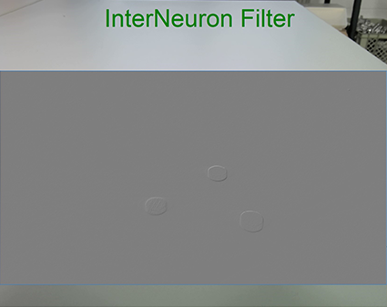 InterNeuron Filter an