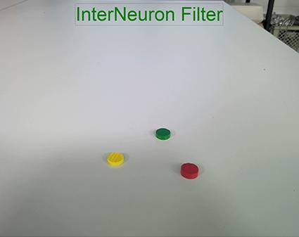InterNeuron Filter aus